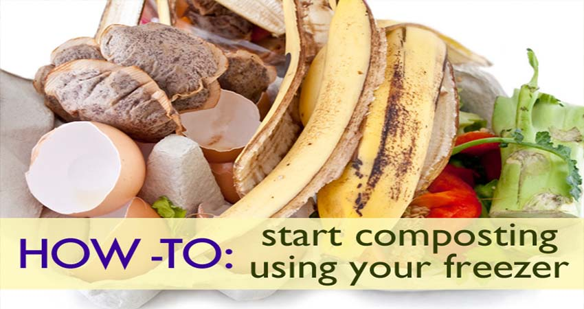 How To Save Your Compost Bin from Stinky Odor