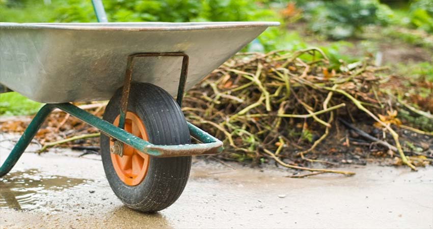 How to Get Rid of Your Yard Waste Brilliantly